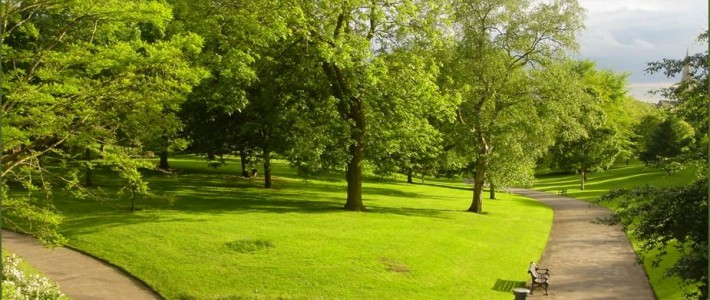 Under lockdown – highlighted importance of green spaces