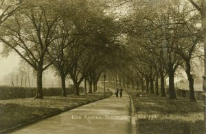 Elm Avenue, c1910. Les Cripwell and www.picturethepast.org.uk